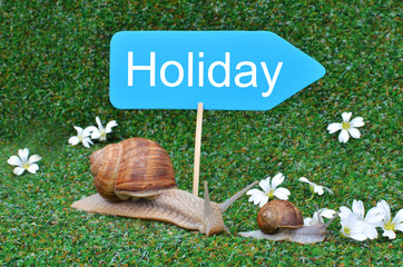 Three snails at the vacation sign
