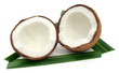 Fresh Coconut with green leaves