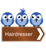 Bird requiring the services of a hairdresser poster