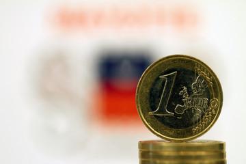 Euro Mayotte