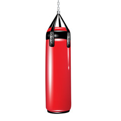 punching bag for boxing
