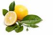 Fresh fruit. Lemon, isolated on a white background.