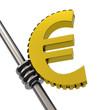 Das Eurozahnrad
