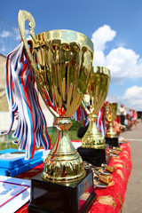Sport cup