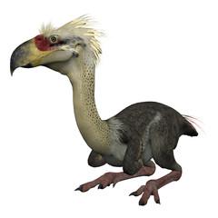 3D Isolated Prehistoric Bird - Phorusrhacos