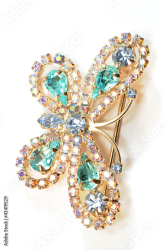 The blue butterfly with crystal