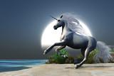 Midnight Unicorn