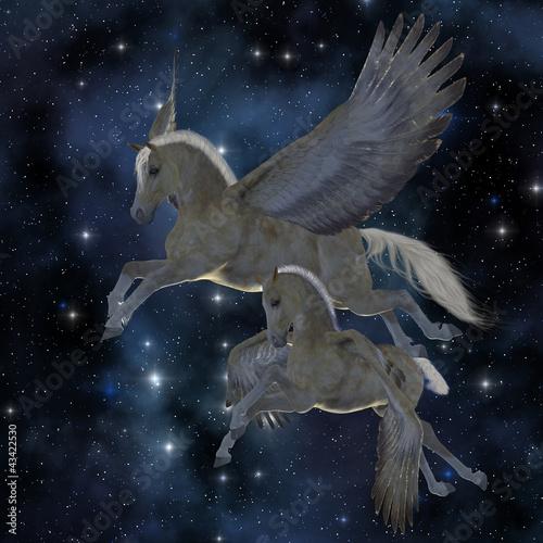 Poster Pony Pegasus 04