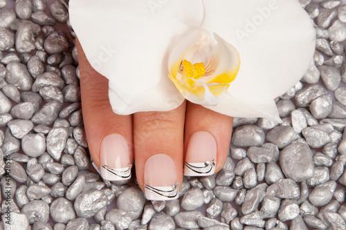 Fototapeten,fingernagel,französisch,manicure,cosmetic