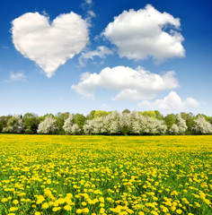 heart from clouds above the spring landscape