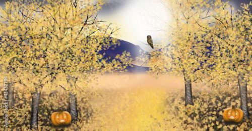 Autumn landscape with golden asp trees pumpkin owl