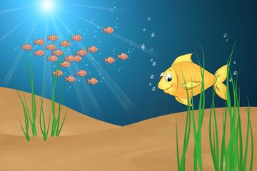 02 Fisch im Meer