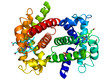 Human oxyhemoglobin on white