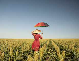 Girl with umbrella at corn field