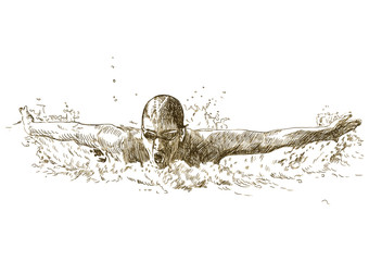 Swimmer, butterfly style - hand drawing converted into vector