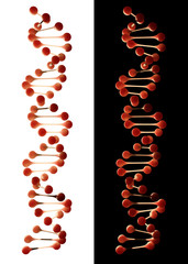 DNA double helix illustration - isolated