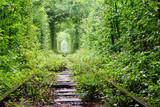 Tunel miłości - 43447140