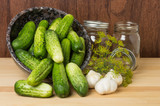Bowl of fresh pickles garlic and dill
