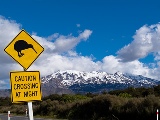 Kiwi Crossing road sign and volcano Ruapehu in NZ
