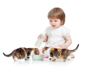 kid feeding cats with milk