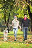 Young couple holding hands and walking a dog - Fine Art prints