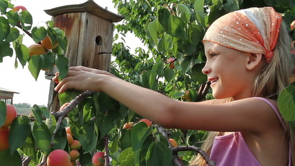 Girl and a apricots