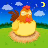 Hen sleep