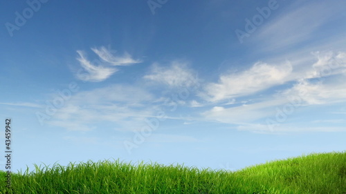 meadow and sky background, 3d animation