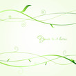 Green leaves and branches. Ecological vector background