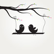 Two cute black birds sitting on the tree