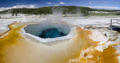 panoramica di un Geyser nel Yellowstone National Park
