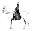 Militaria 19th century - Rider