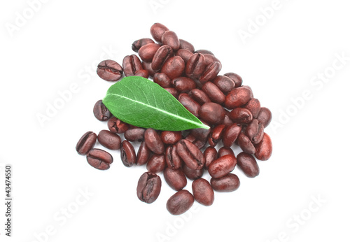 Green leaf on pile of coffee