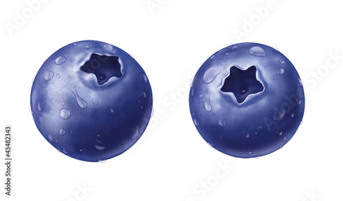 juicy fresh water drops of  blueberry on white background