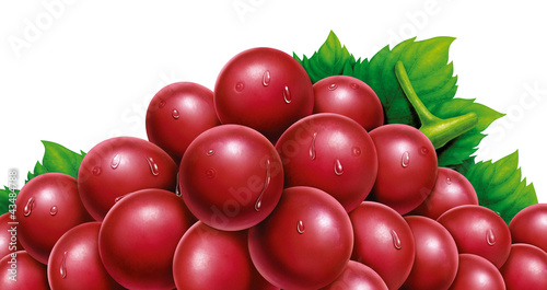 juicy fresh water drops of grapes with white background