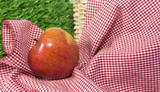 Red apple in a picnic scene 1