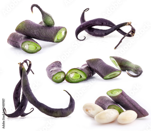 Collection of beans pods isolated on white background