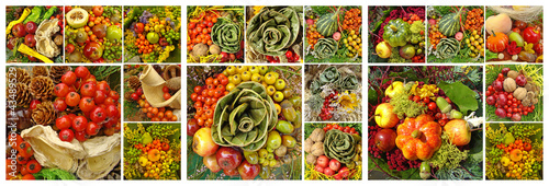 fall fruit collage