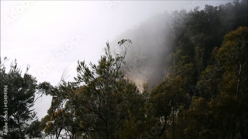 Nebel in den Blue Mountains