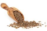 Fototapety Caraway Seed