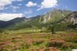 Ursprungalm Nähe Schladming in Österreich