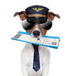 boarding pass dog
