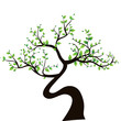 abstract tree, symbol of nature