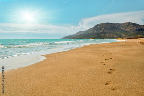 Footprints on the Patara beach  in Turkey - 43518916