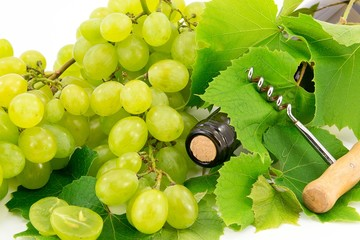White grape, fruit