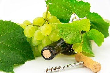 Bottle of wine with grape vines