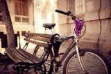 Secured Bicycle - 43533781