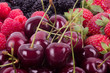 Berry Mix background - raspberries, mulberry, strawberry, cherry