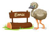 emu and name plate