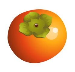 vector icon persimmon